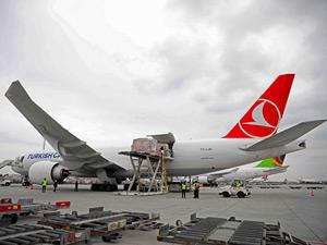 Turkish Cargo Tarihi Eserlerin Japonya'ya Taşınmasına Sponsor Oldu