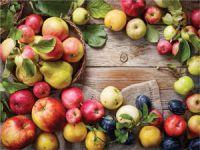 Yaş Sebze Meyve İhracatı Arttı Geliri Azaldı