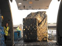Air Cargo Bottlenecks Could Put Lives at Risk- Urgent Government Action Required